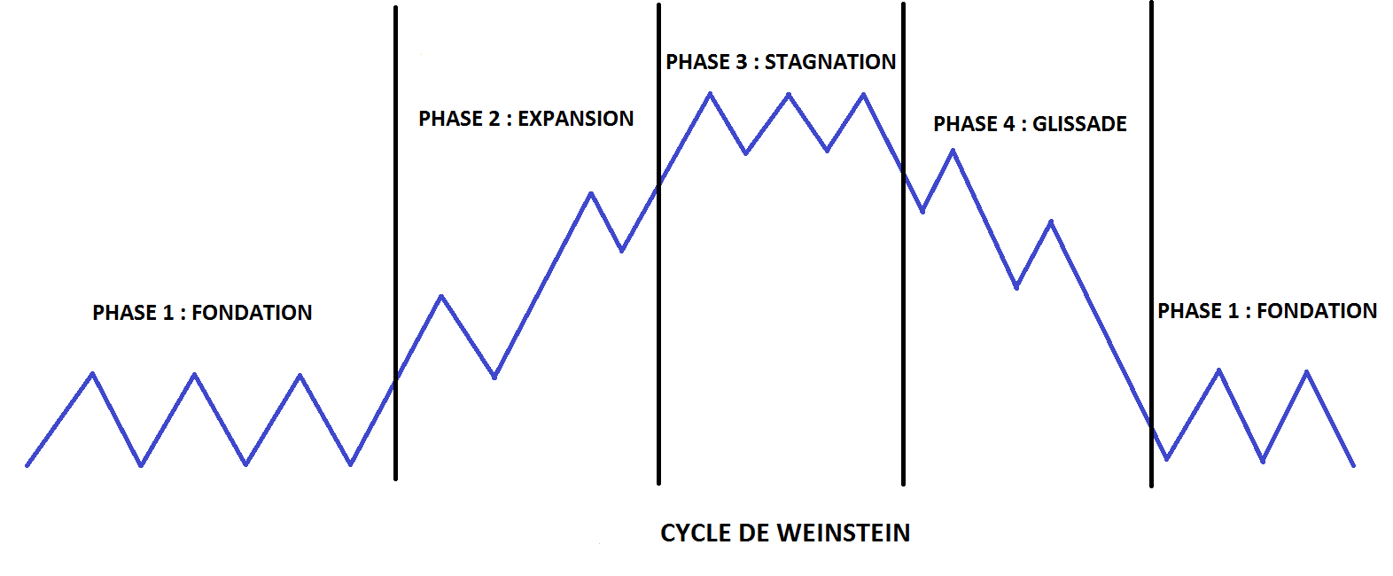Découvrez les 4 phases dy cycle de Weinstein